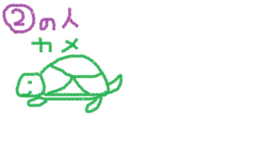 turtle san